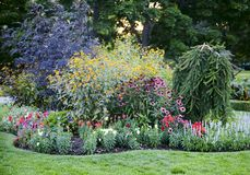 Colourful Flowerbeds in the Garden. Colourful Flowerbeds in the Summer Garden royalty free stock photos