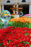 Colourful Flowers. On display in Las Vegas Royalty Free Stock Images