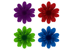 Colourful Flowers. Stylish vector flowers in various colours Royalty Free Stock Images