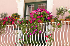 Colourful flowers in bloom on balcony in old building Royalty Free Stock Image
