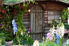 Free Colourful Flowers In Front Of A Tiny Cabin Stock Photo - 114800280