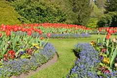 Colourful Flowers and Lawn Pathway in a Formal Garden stock photos