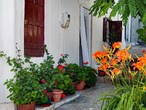 Colourful Flowers in Pots Outside White Greek House Royalty Free Stock Images