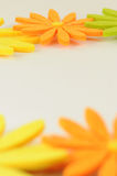Colourful flowers with white space Royalty Free Stock Photo
