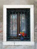 Colourful Flowers in Window, Venice Stock Image