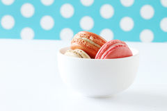 Colourful french macaroons on polka dot background Stock Images