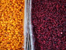 Colourful Fruit Market in Mongolia. Corn and blueberries for sale at a colourful fruit and vegetable market in Mongolia`s capital, Ulaanbaatar stock images