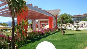 A colourful garden. Royalty Free Stock Photography