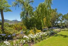 Colourful garden scene Stock Photo