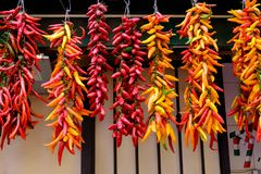 Colourful Hanging Chilli Peppers Stock Photo