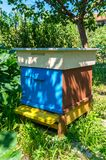 Wood Hive For Bees. Beekeeping. Colourful hive of bees on a meadow in summer. Beekeeping royalty free stock photo