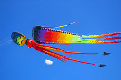 Colourful kites Royalty Free Stock Image