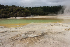 Colourful lake in Waiotapu Stock Photos
