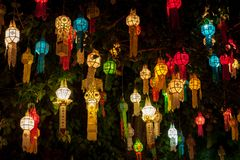 Colourful lantern light on sacred Bodhi tree. Colourful lantern light on sacred Bodhi tree during thai lantern festival. Beginning of Loy Krathong lantern Royalty Free Stock Photos