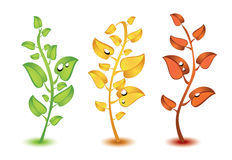 Colourful leaves. Yellow, red, green plants with dew drops Stock Photography