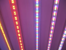 Colourful LED light stripes. On the dark pink background Royalty Free Stock Photography