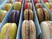 Colourful Macarons royalty free stock image