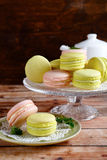 Colourful macaroon on a stand Royalty Free Stock Images