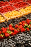 Colourful mix of different fresh berries at market.  Stock Photography