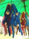 Colourful Monkey dolls Royalty Free Stock Photos