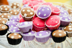 Colourful Muffins Stock Image