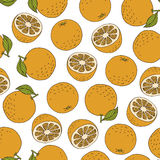 Colourful oranges on white background, pattern. Colourful oranges on white background, seamless pattern vector illustration