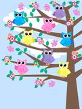 Colourful owls in a tree. Illustration of colourful owls sitting in a tree Royalty Free Stock Image