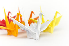 Colourful paper birds. A group of colourful paper birds, shallow depth of field Royalty Free Stock Photo