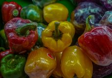 Colourful paprika stock photo