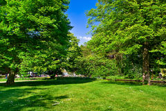 Colourful park in spring time. Royalty Free Stock Images