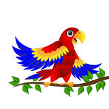 Colourful parrot sitting on vetch Royalty Free Stock Images