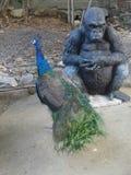 Colourful Peacock and Gorila sculpture. Peacock and Gorila sculpture in the garden stock photo