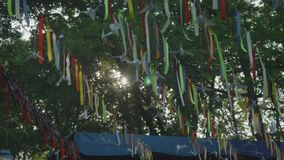Pennants hanging on line amid tree branches stock video footage