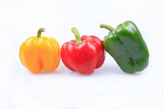 Colourful pepper Stock Images