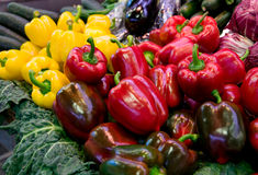 Colourful peppers Stock Images