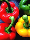 Colourful peppers. Close view of four colourful peppers Stock Photos