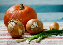Colourful pumpkin and onions. royalty free stock photo