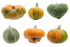 Colourful Pumpkins Isolated On White Background. Stock Photography