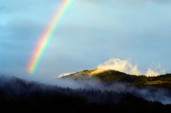 A colourful rainbow after summer rain. In the evening Royalty Free Stock Images