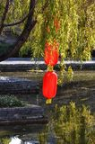 Red Lamp in Willow Tree. Colourful red lanterns hanging on the willow tree have beautiful reflection in pond water . Taken in Lijiang,Yunnan, China stock image