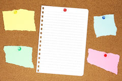 Colourful ripped note paper on corkboard Royalty Free Stock Photo
