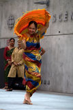 Colourful Sari Royalty Free Stock Photography