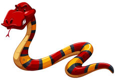 Colourful scary snake Royalty Free Stock Images