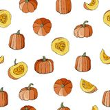 Seamless pattern with colourful pumpkins autumn design. Colourful seamless pattern with hand drawn pumpkins vector illustration