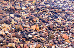 Colourful stones underwater Royalty Free Stock Photos