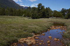 Colourful stream in Patagonia. Stream tainted orange by naturally occurring oxides and bacteria, flowing across a meadow towards the River Frio on the Carretera stock photography