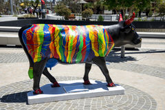 Colourful strip painted black cow near Bell Tower in Perth City Stock Photos