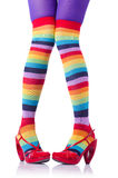 Colourful striped stockings Stock Photos