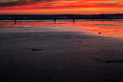 Colourful sunset over the beach at Polzeath Royalty Free Stock Photo