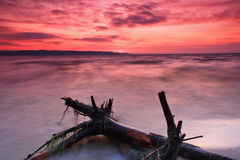 Colourful sunset on the sea. Colourful sunset on the shore of tropical sea Stock Photo